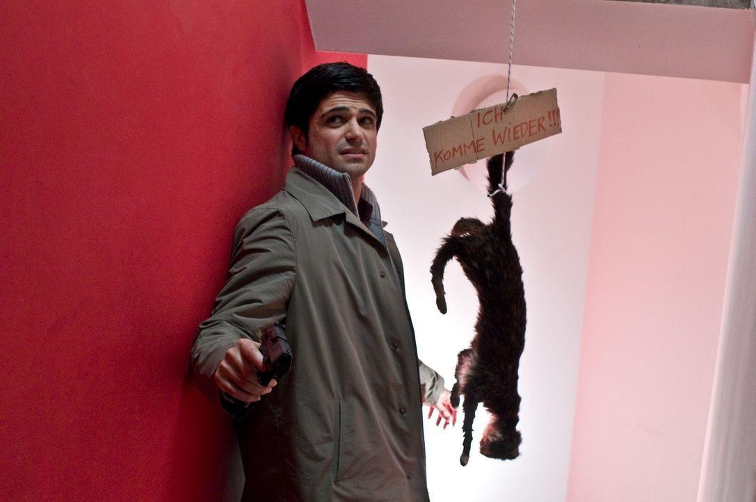 Als Andreas (Maximilian Grill) in dem Haus der Ermordeten einen Warnhinweis nebst aufgehängter Katze entdeckt, ahnt er, dass der Mörder sein Opfer z... - Bildquelle: Martin Rottenkolber SAT.1