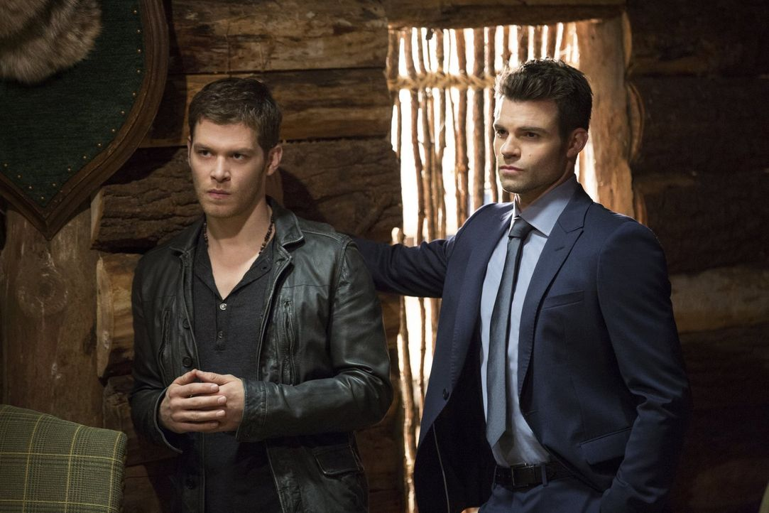 Als ihre Seelen in einer Fantasiewelt eingesperrt sind, müssen sich Klaus (Joseph Morgan, l.) und Elijah (Daniel Gillies, r.) mit alten Familiengesc... - Bildquelle: Warner Bros. Entertainment, Inc