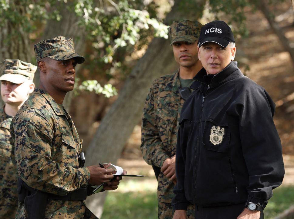 Gibbs (Mark Harmon, r.) und sein Team müssen einen neuen Fall aufdecken ... - Bildquelle: CBS Television