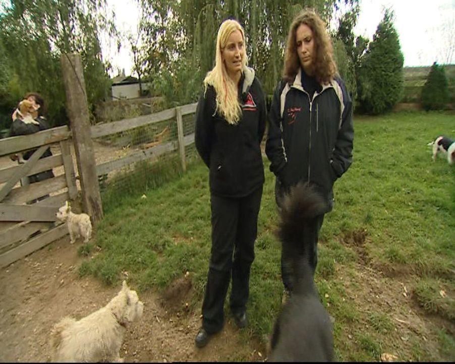 Haben eine Mammutaufgabe vor sich: Hundetherapeutin Stefanie (l.) ist Hundetherapeutin und Kollegin Conny (r.) ... - Bildquelle: SAT.1 Gold
