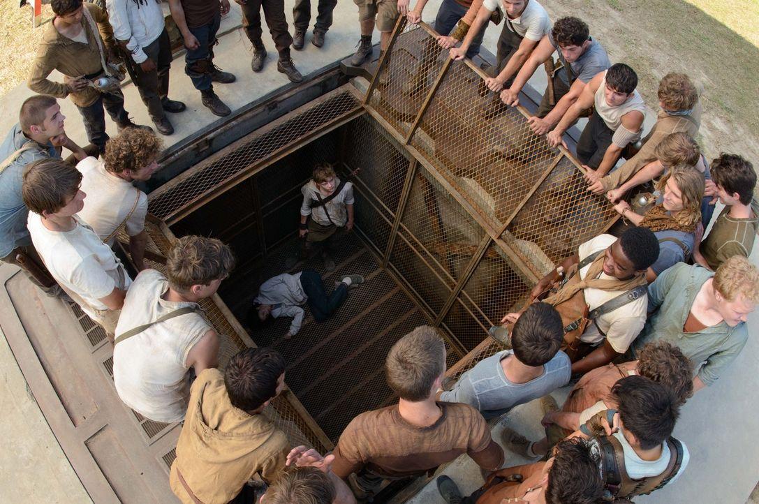 Newt (Thomas Brodie-Sangster, im Aufzug) und die anderen Jungs wundern sich, weshalb der Aufzug, der alle 30 Tage einen Jungen mit Gedächtnisverlust... - Bildquelle: 2014 Twentieth Century Fox Film Corporation.  All rights reserved.