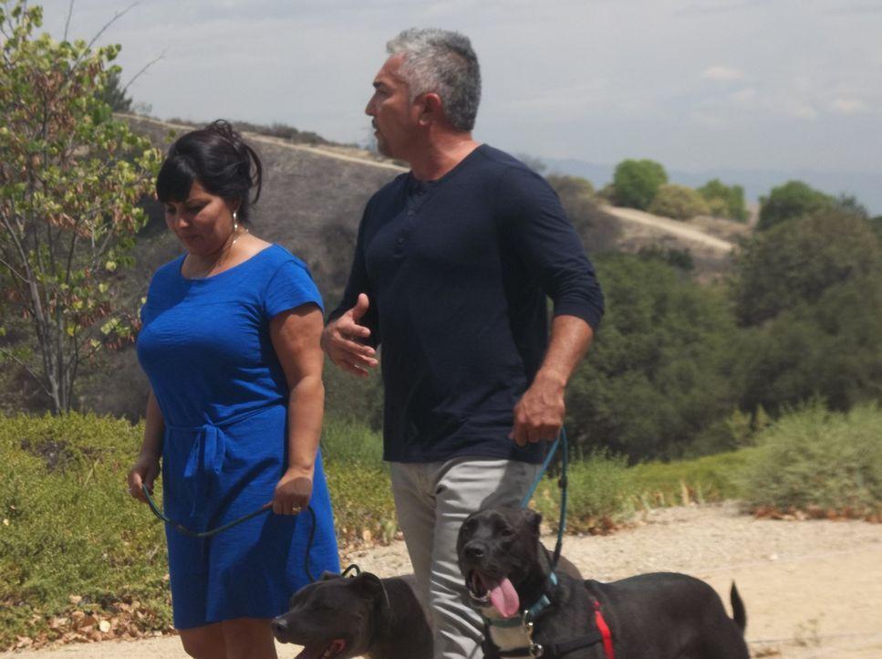 Rose (l.) wendet sich an Cesar (r.), nachdem der Hund ihrer Nachbarn sie angegriffen hat. Cesar erkennt schließlich, warum der Hund jeden angreift,... - Bildquelle: NGC/ ITV Studios Ltd