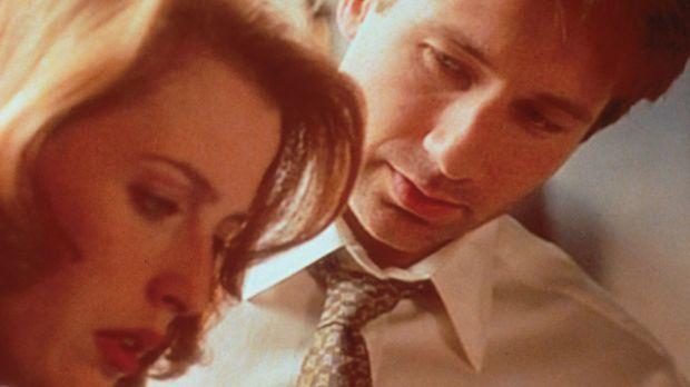 Mulder (David Duchovny, r.) zeigt Scully (Gillian Anderson, l.) ein Video, au...