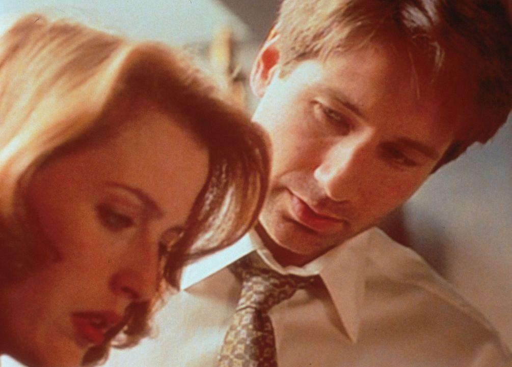 Mulder (David Duchovny, r.) zeigt Scully (Gillian Anderson, l.) ein Video, auf dem angeblich ein Außerirdischer obduziert wird. - Bildquelle: TM +   2000 Twentieth Century Fox Film Corporation. All Rights Reserved.