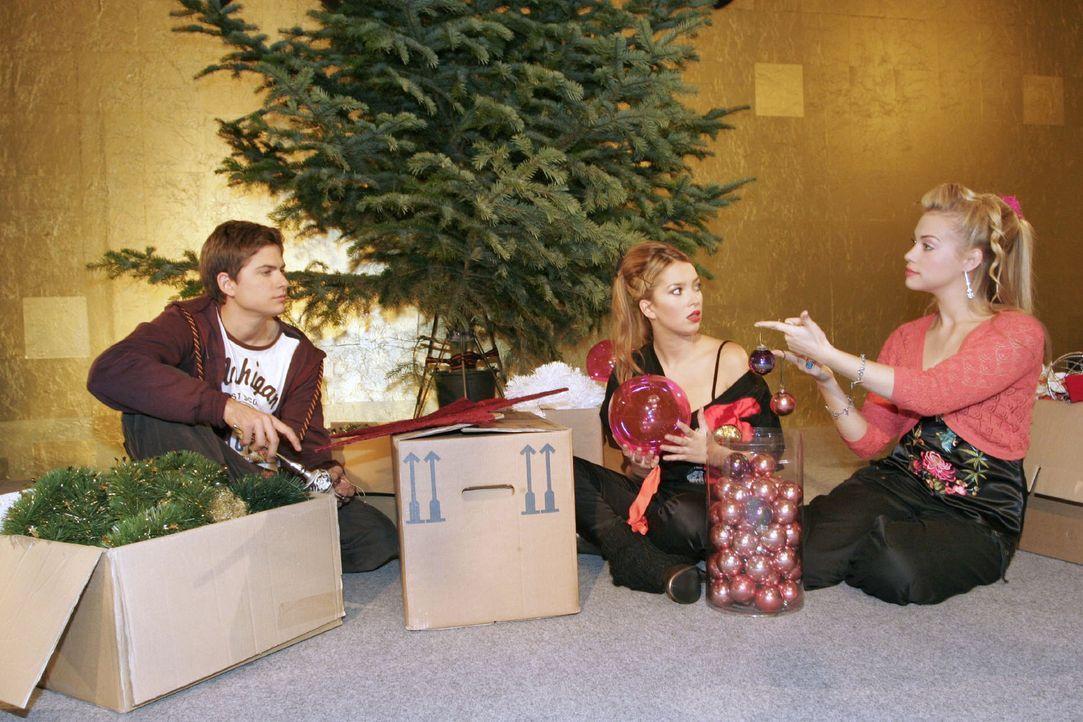 Timo (Matthias Dietrich, l.), Kim (Lara-Isabelle Rentinck, r.) und Hannah (Laura Osswald, M.) bekommen den Auftrag, gemeinsam den Weihnachtsbaum zu... - Bildquelle: Noreen Flynn Sat.1