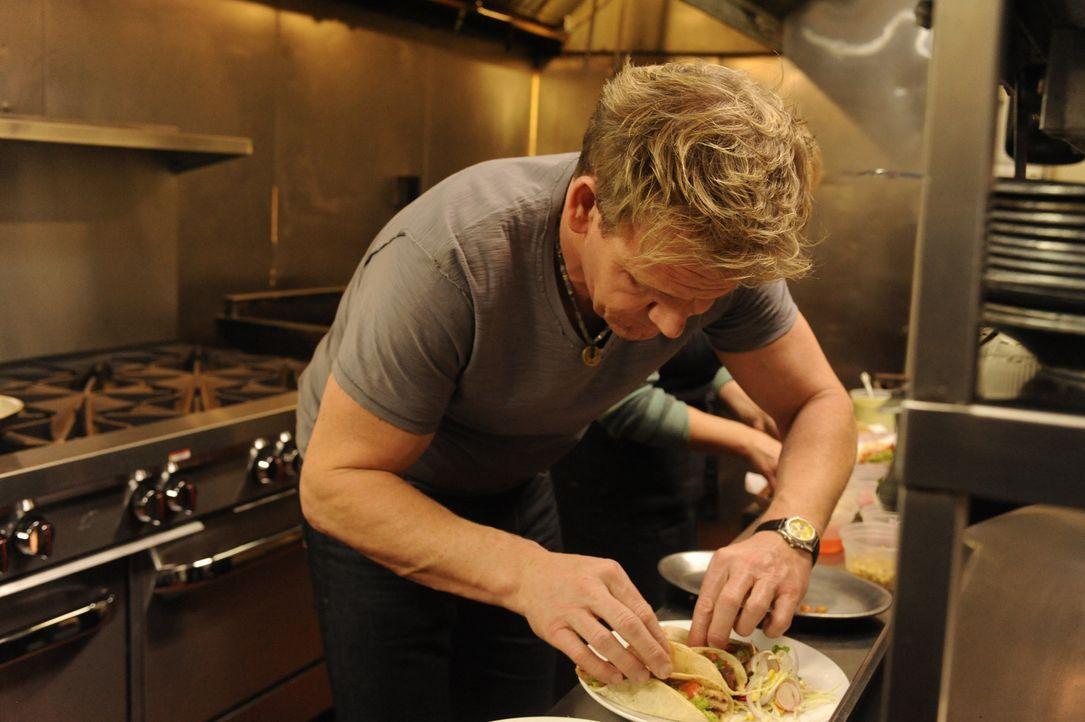Er ist streng, ehrlich und direkt: Sternekoch Gordon Ramsay hilft dabei, Restaurants wieder auf Vordermann zu bringen ... - Bildquelle: 2011 ITV Studios, Inc. all rights reserved.