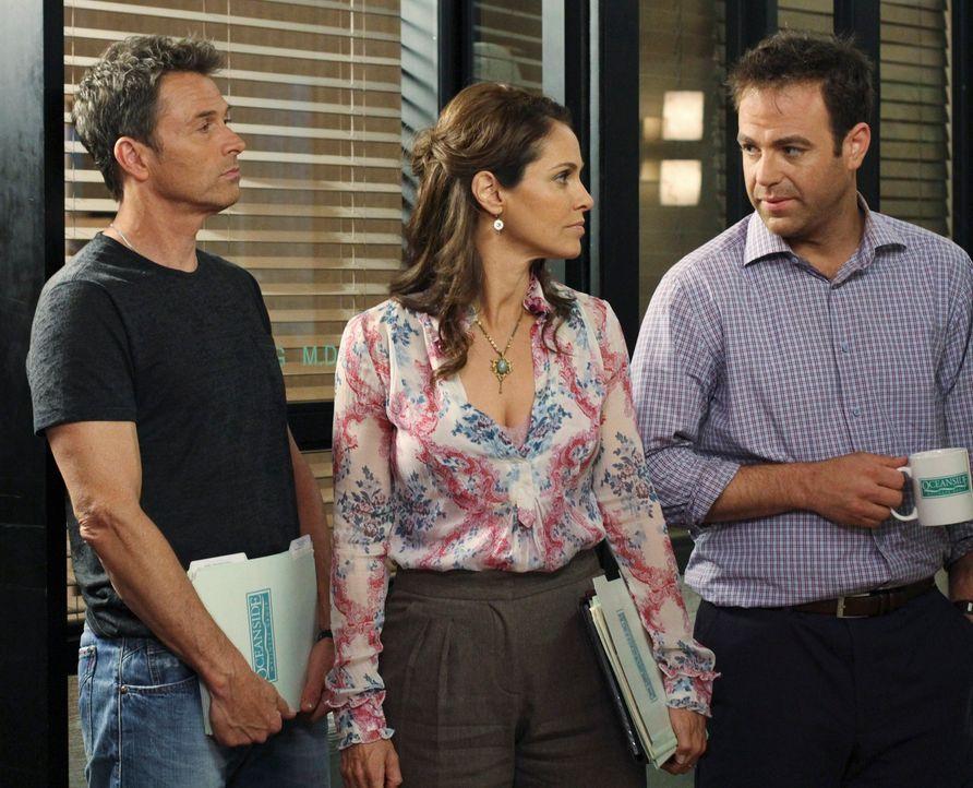 Pete (Tim Daly, l.) und Violet (Amy Brenneman, M.) sowie Cooper (Paul Adelstein, r.) und Charlotte geraten wieder einmal aneinander, weil sie vollko... - Bildquelle: ABC Studios