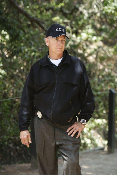 Ein neuer Fall beschäftigt Gibbs (Mark Harmon) und sein Team ... - Bildquelle: CBS Television