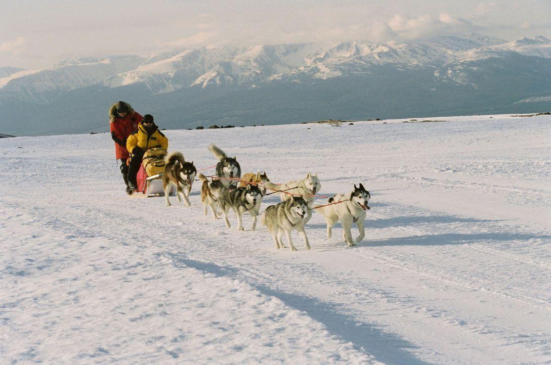 Begeben sich auf eine gefährliche Expedition: Hundeführer Jerry Shepard (Paul Walker, l.) und der Geologe Davis McClaren (Bruce Greenwood, r.) ... - Bildquelle: Chris Large Walt Disney Pictures. All rights reserved.