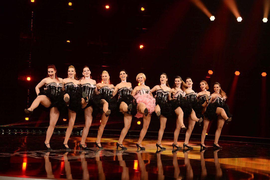 Got-To-Dance-KataMackh-Dance-Company-09-SAT1-ProSieben-Willi-Weber - Bildquelle: SAT.1/ProSieben/Willi Weber