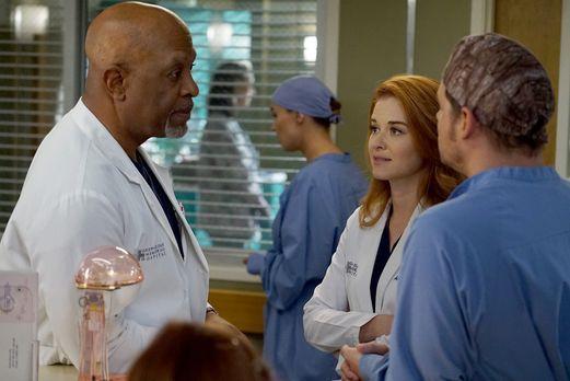 Grey's Anatomy - Ein harter Arbeitstag wartet auf Webber (James Pickens Jr.,...