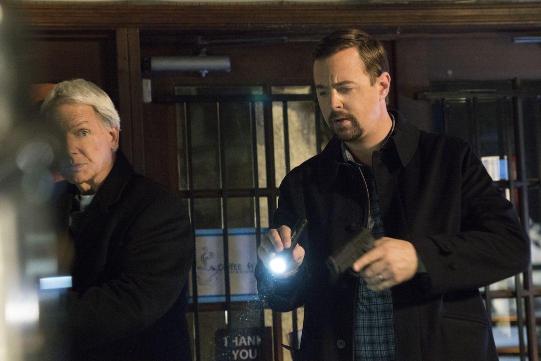 Während Torres und Bishop verdeckt ermitteln, geben ihnen Gibbs (Mark Harmon, l.) und McGee (Sean Murray, r.) im Kampf gegen einen Drogenschmugglerr... - Bildquelle: Monty Brinton 2017 CBS Broadcasting, Inc. All Rights Reserved.