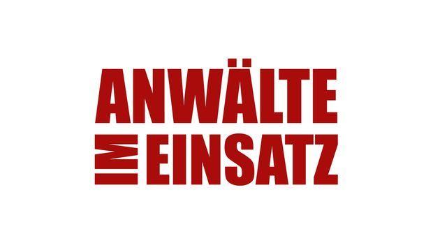 Anwälte im Einsatz - Anwälte im Einsatz - Logo © SAT.1