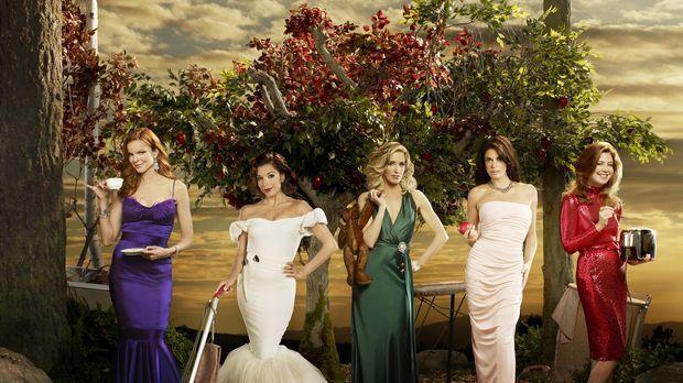 (6. Staffel) - Spielen perfekte Hausfrauen, doch hinter der makellosen Fassad...
