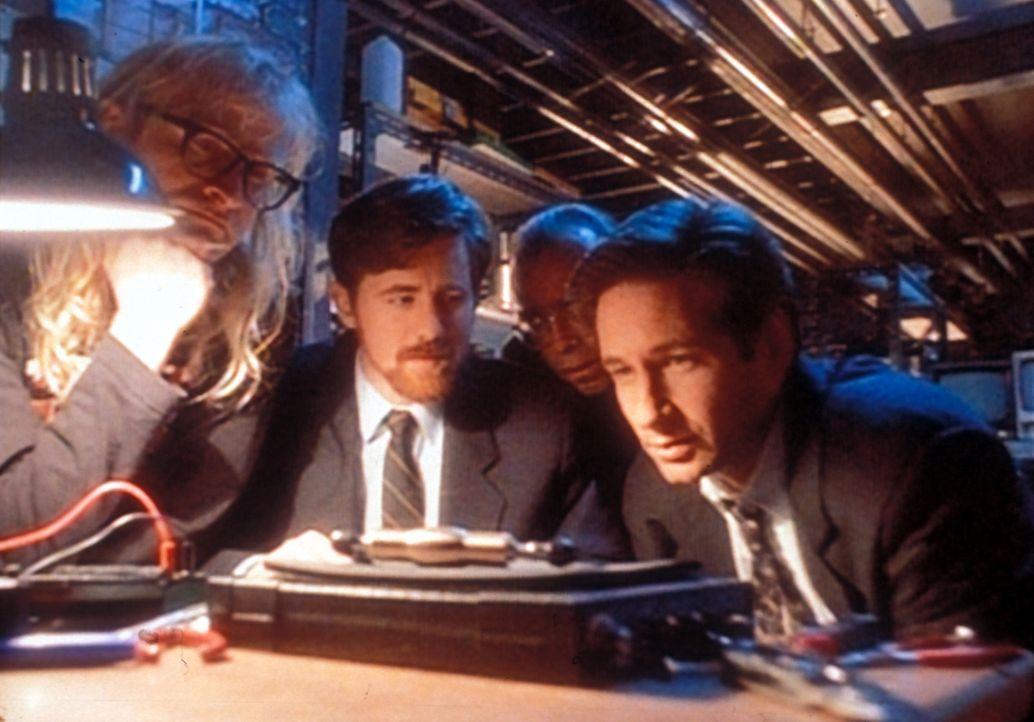 Mulder (David Duchovny, r.), Langly (Dean Haglund, l.), Byers (Bruce Harwood, 2.v.l.) und Frohike (Tom Braidwood, 2.v.r.) betrachten einen Kabelfern... - Bildquelle: TM +   Twentieth Century Fox Film Corporation. All Rights Reserved.
