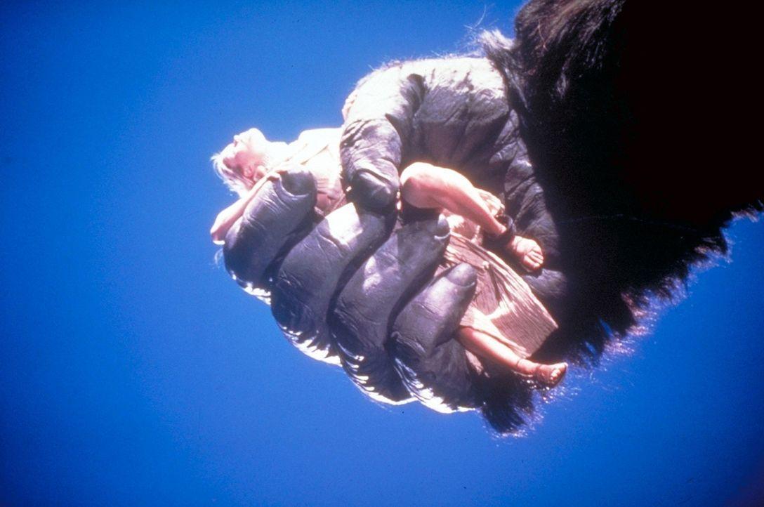Nur Jack Prescott kann das Starlet Dawn aus den Fängen des Menschenaffen King Kong befreien, der sie als sein Eigentum betrachtet ... - Bildquelle: Paramount Pictures