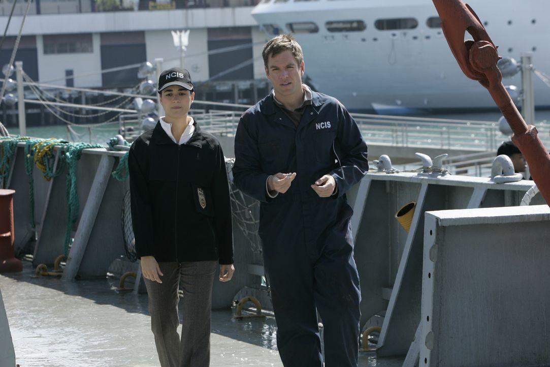 Bei einer Bombenexplosion auf einem Schiff wird Gibbs so schwer verletzt, dass er in ein tiefes Koma fällt. Tony (Michael Weatherly, r.) und Ziva (C... - Bildquelle: CBS Television