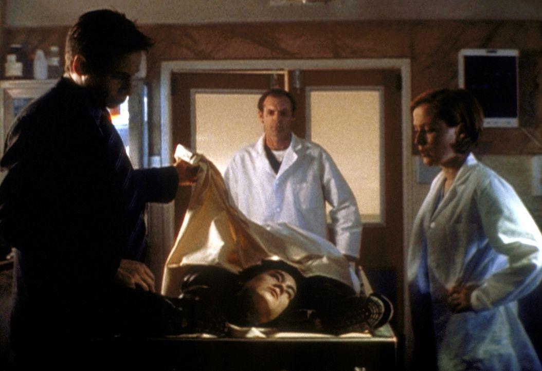 Mulder (David Duchovny, l.) und Scully (Gillian Anderson, r.) sehen sich den toten Darryl Musashi (Christopher Ng, liegend) an. - Bildquelle: TM +   2000 Twentieth Century Fox Film Corporation. All Rights Reserved.
