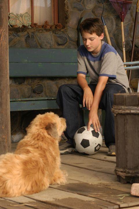 Als der 13-jährige Zach Connolly (Jake Thomas) den fußballbegeisterten Straßenköter Kimble trifft, ändert sich seine hoffnungslose Lage ... - Bildquelle: 2006 Sony Pictures Television International