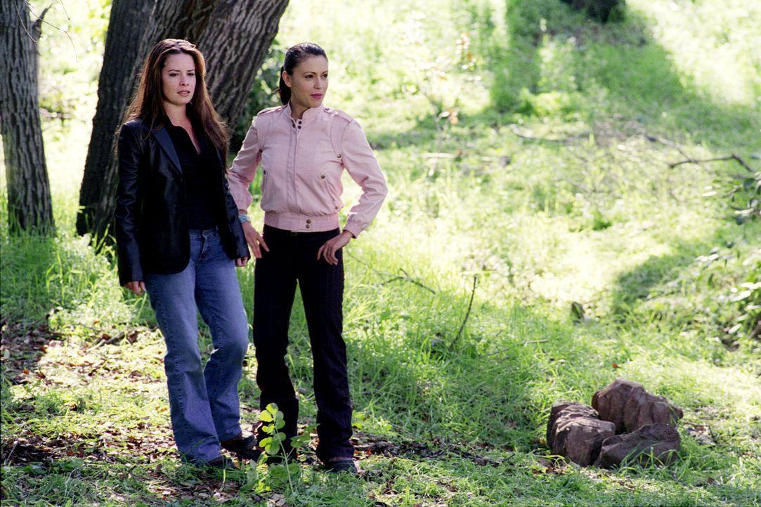 Auf der Suche nach den Waldnymphen: Piper (Holly Marie Combs, l.) und Phoebe (Alyssa Milano, r.) ... - Bildquelle: Paramount International Television