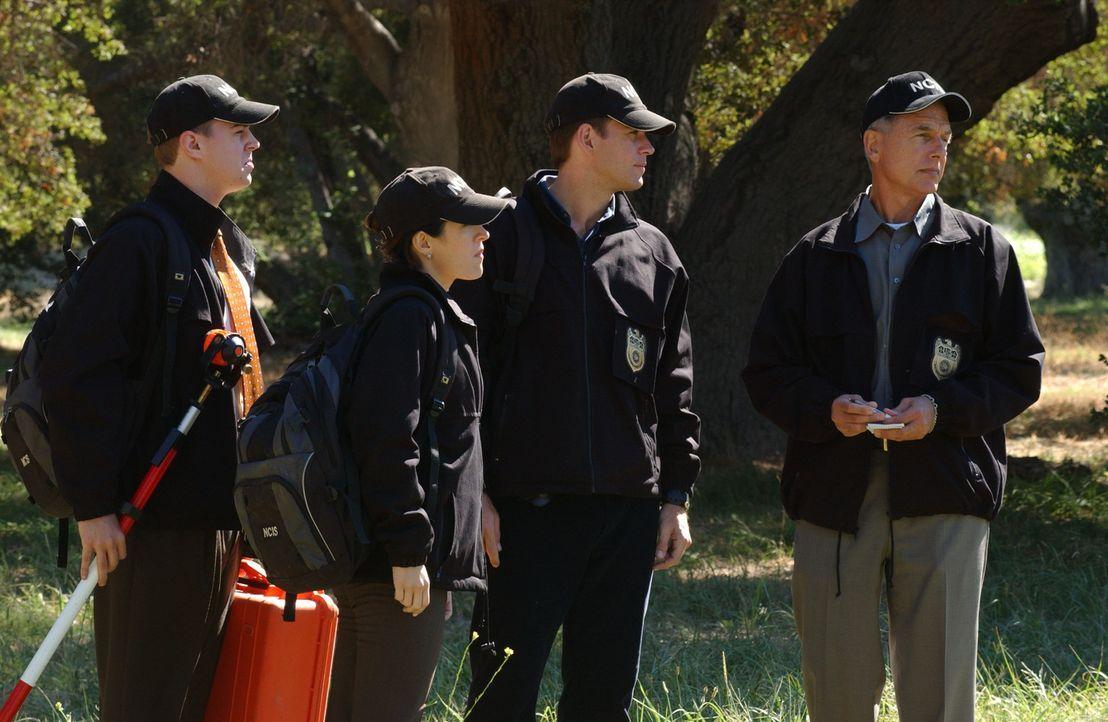 Bei einem Bombenabwurfmanöver der Marines wird ein Zivilist getötet. Während McGee (Sean Murray, l.), Kate (Sasha Alexander, 2.v.l.), Tony (Micha... - Bildquelle: CBS Television