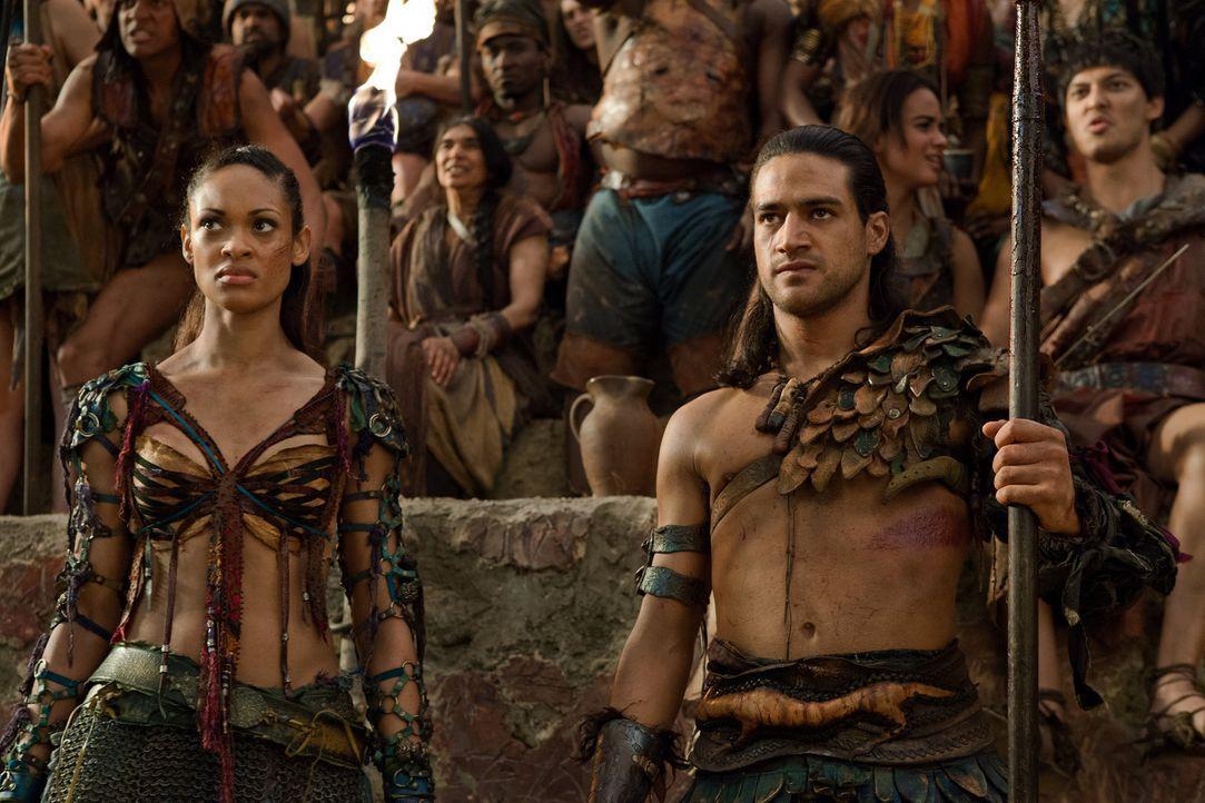 Zu Ehren des toten Crixus und aller anderen Gefallenen gibt Spartacus ein Fest. Die gefangengenommenen Römern müssen, sozusagen als Gladiatoren, geg... - Bildquelle: 2012 Starz Entertainment, LLC. All rights reserved.