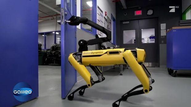 dieser roboter kann als wachhund genutzt werden. Black Bedroom Furniture Sets. Home Design Ideas