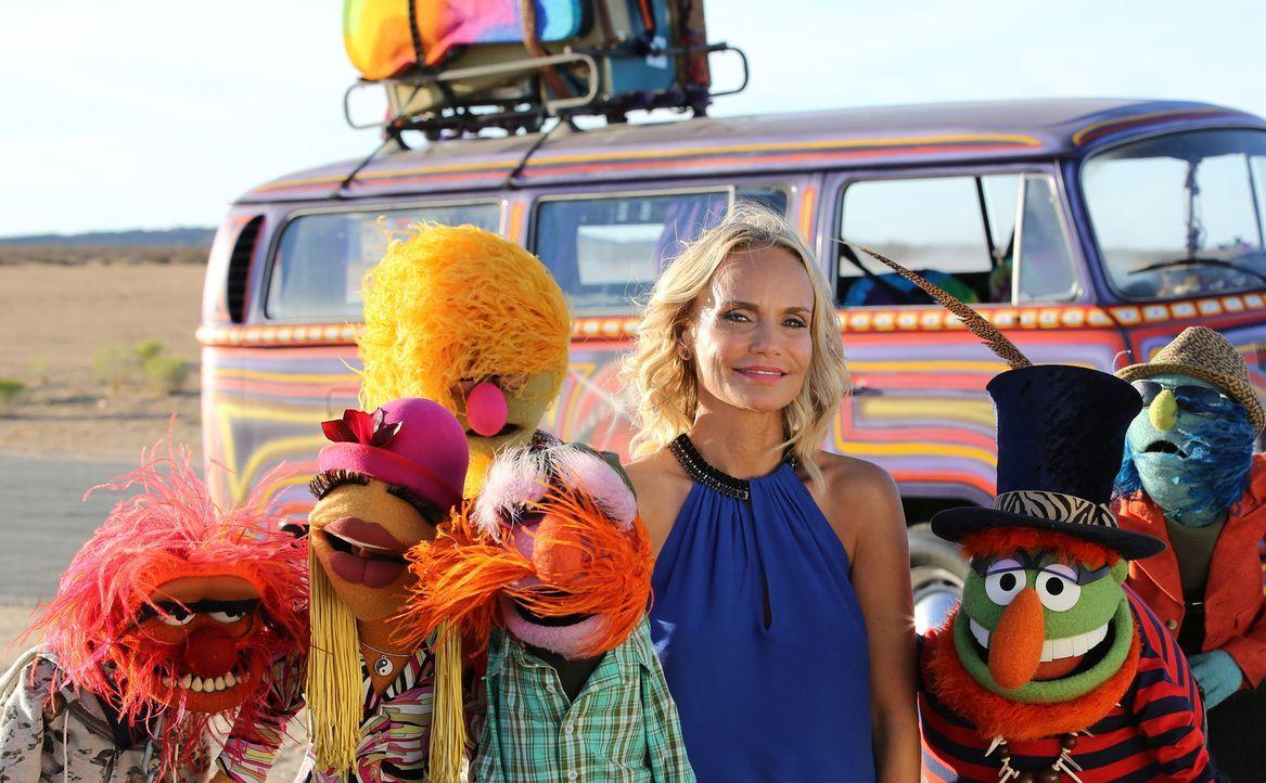 """Nach ihrem gelungenen Auftritt bei """"Up Late with Miss Piggy"""" akzeptiert die Musicaldarstellerin Kristin Chenoweth (3.v.r.) das Angebot, mit den Band... - Bildquelle: Carol Kaelson ABC Studios"""