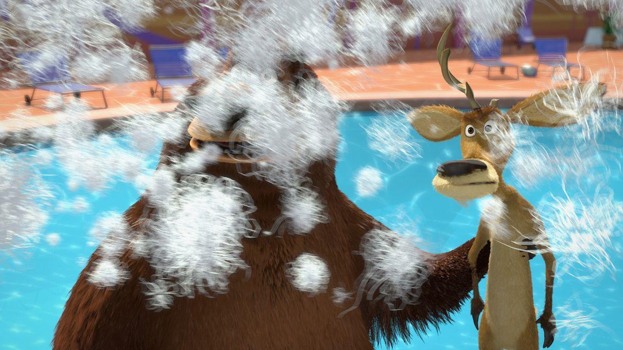 Während ihrer Rettungsaktion geraten Boog (l.) und Elliot (r.) mitten ins Feindeslager: die Welt der Haustiere! - Bildquelle: 2008 Sony Pictures Animation Inc. All Rights Reserved.