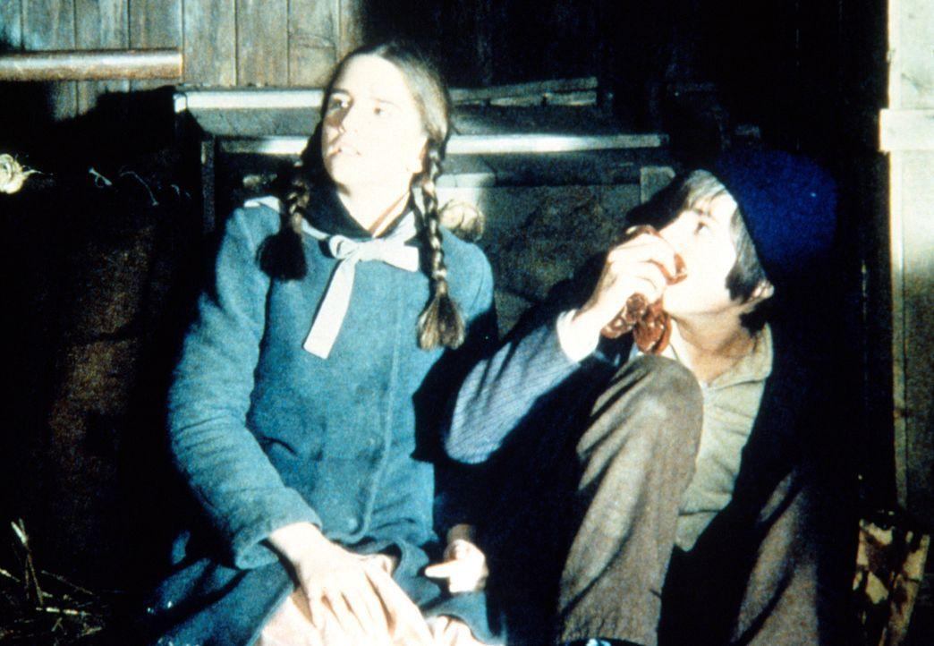 Laura (Melissa Gilbert, l.) und Dylan (Steve Shaw, r.) werden als blinde Passagiere in einem Güterwagen entdeckt. - Bildquelle: Worldvision