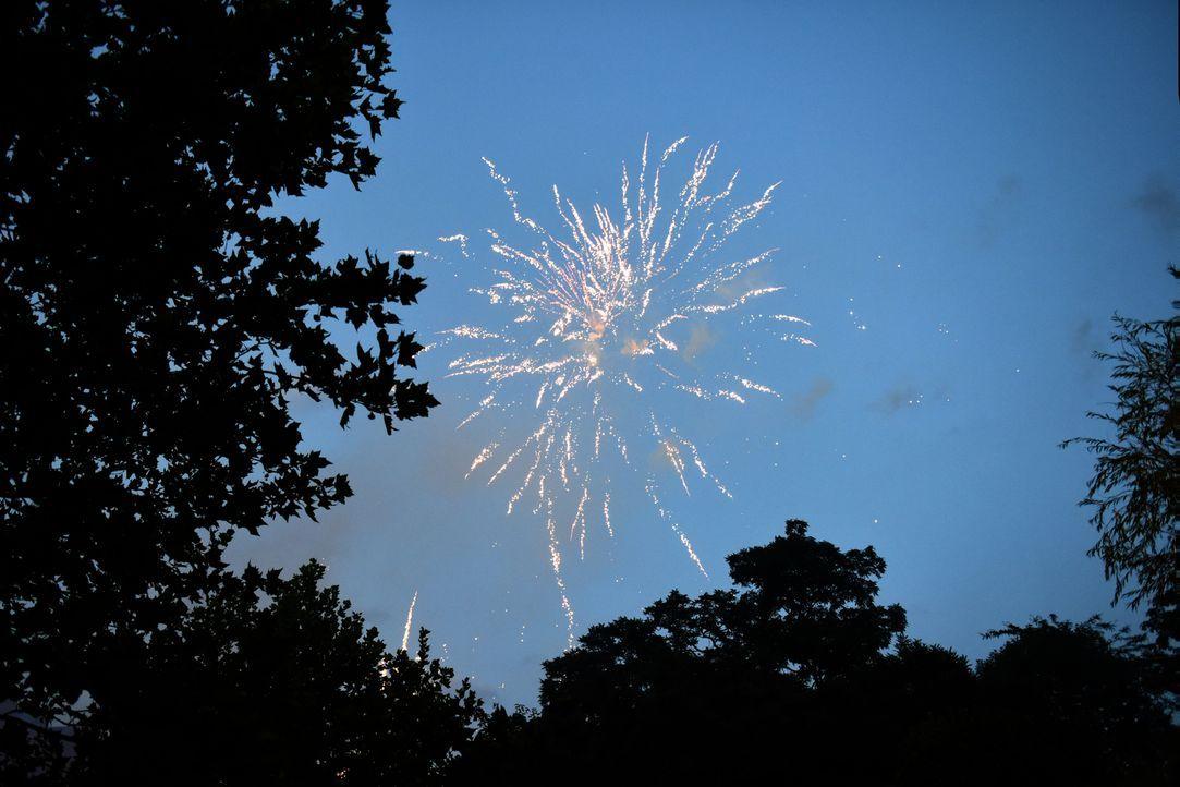 Entfacht die Liebe wie ein Feuerwerk, wenn sich zwei Singles auf dem Standesamt erstmalig sehen und den Bund fürs Leben eingehen? Oder ist alles nur... - Bildquelle: Christoph Assmann SAT.1