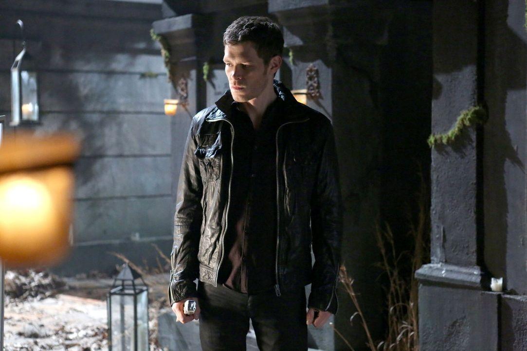 Wird Klaus (Joseph Morgan) selber wie derjenige, den er Jahrhunderte lang selber fürchtete? - Bildquelle: Warner Bros. Television