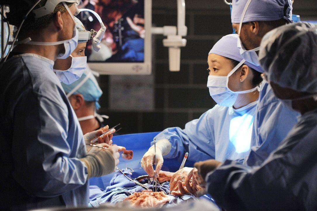 Kämpfen um Leben und Tod: Owen (Kevin McKidd, l.) Teddy (Kim Raver, 2.v.l.), Cristina (Sandra Oh, 3.v.r.) und Jackson (Jesse Williams, 2.v.r.) ... - Bildquelle: ABC Studios