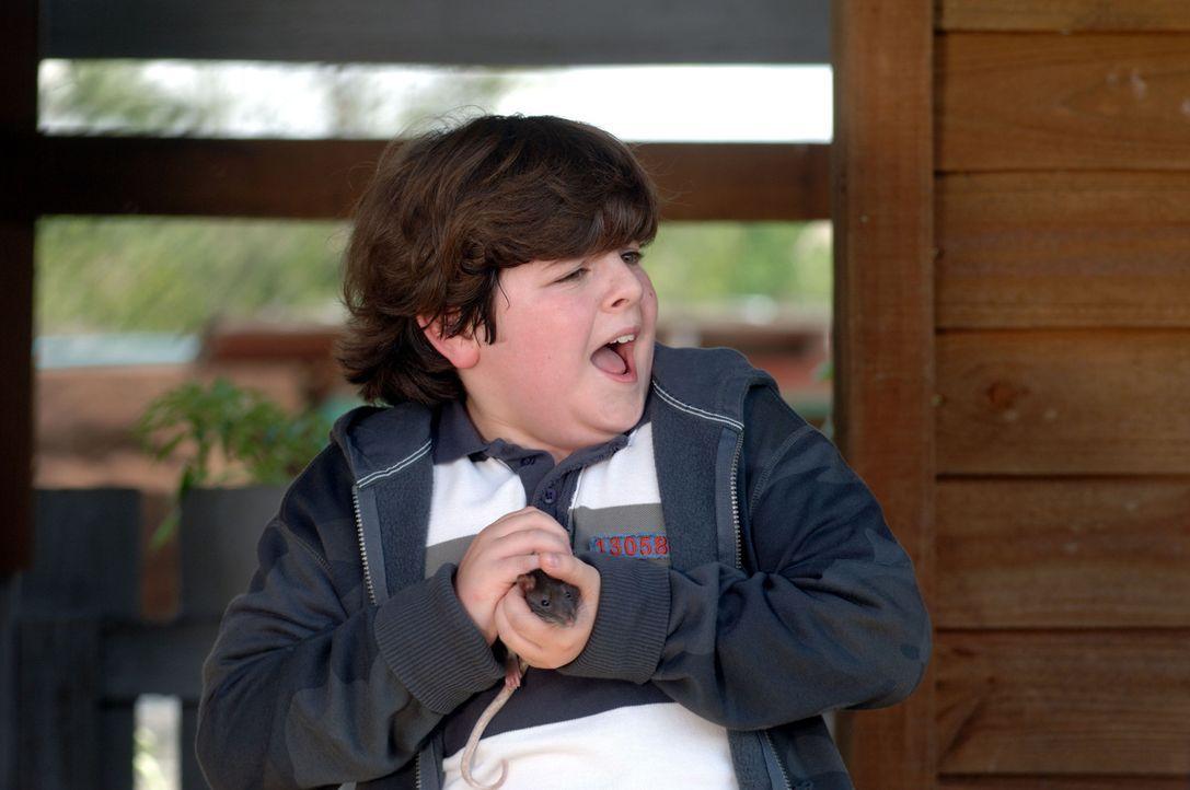 Hat die Tierliebe von seinen Eltern geerbt: Ace Ventura Jr. (Josh Flitter) ...