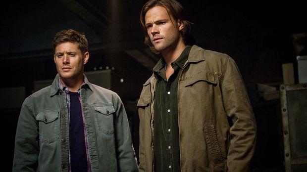 Eigentlich kämpfen Sam (Jared Padalecki, r.) und Dean (Jensen Ackles, l.) gem...