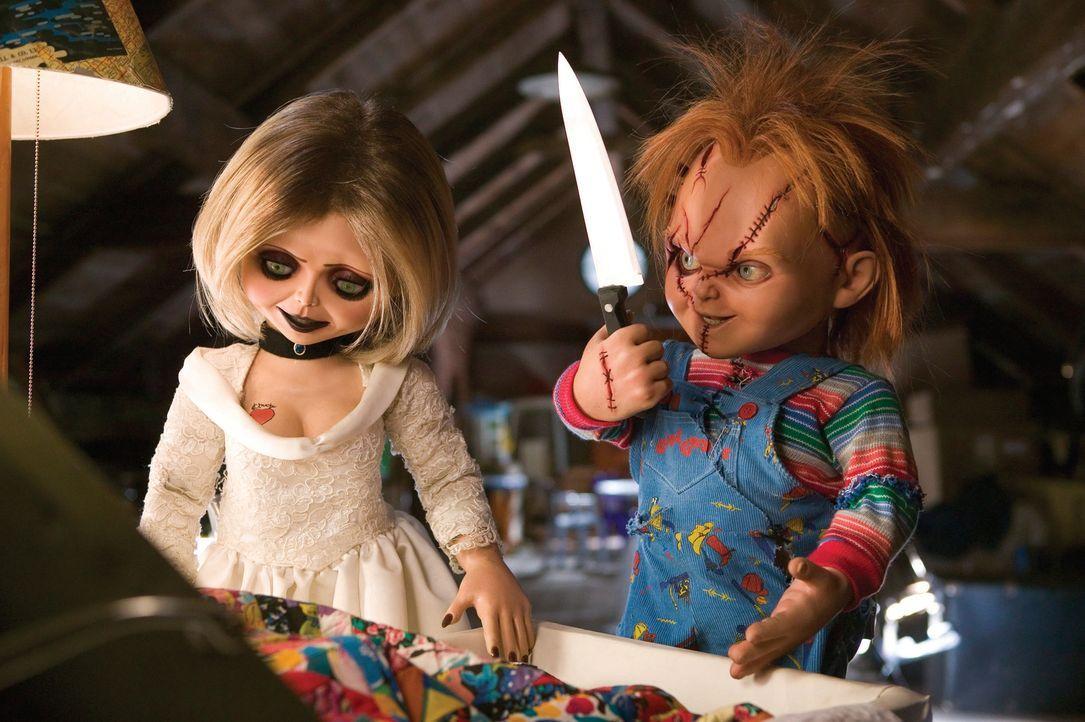 Kaum von den Toten auferstanden, hinterlässt das Mörderpuppenpärchen Chucky, r. und Tiffany, l. wieder eine gewaltige Blutspur ... - Bildquelle: Constantin Film