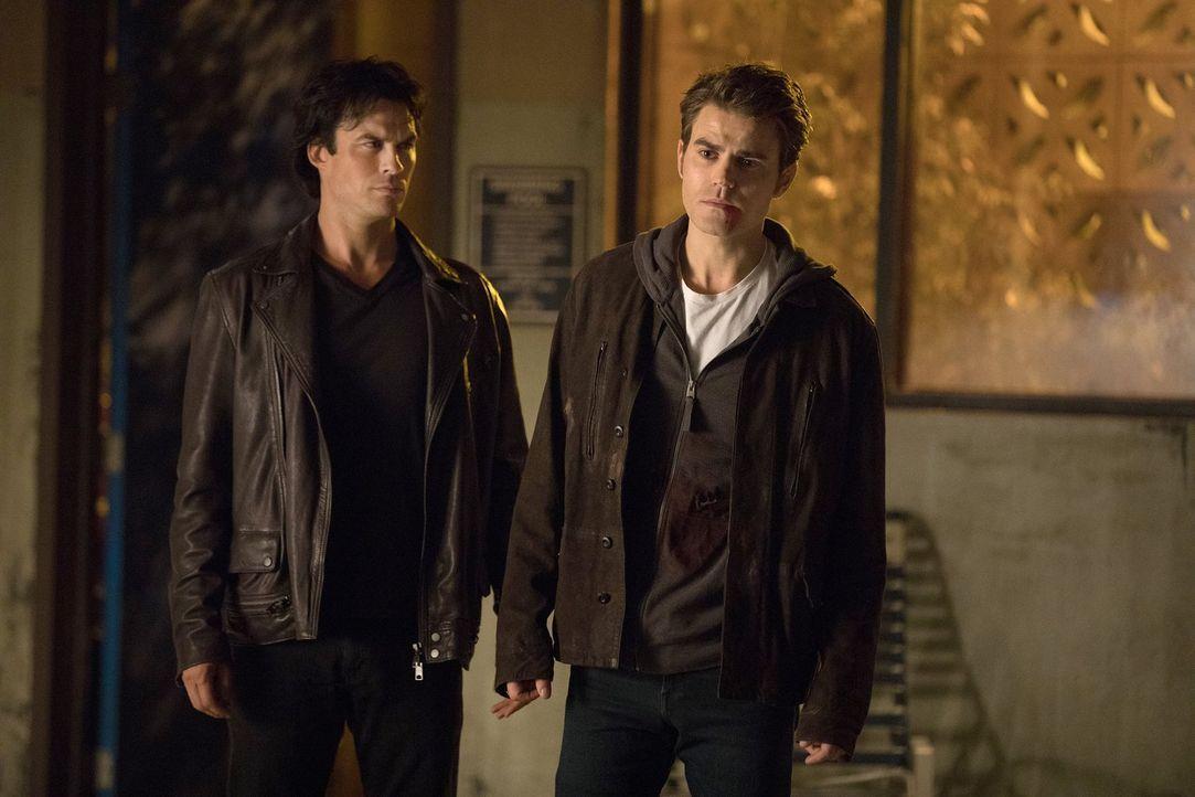 Während Damon (Ian Somerhalder, l.) eine interessante Information von Seline erhält, muss Stefan (Paul Wesley, r.) sich auf einen folgenschweren Dea... - Bildquelle: Warner Bros. Entertainment, Inc.
