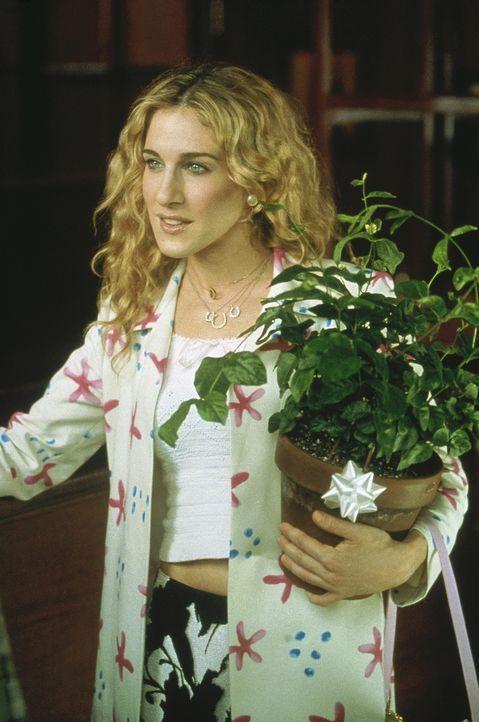 Mit einem Topf frischer Blumen bedankt sich Carrie (Sarah Jessica Parker) bei Steve für die Einladung. - Bildquelle: Paramount Pictures