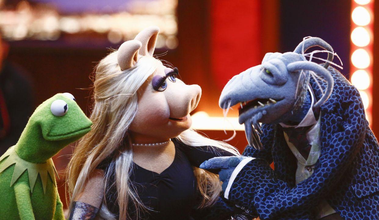 Als Miss Piggy (M.) sich bei den Proben für eine Tanzeinlage das Bein bricht, müssen sich Kermit (l.) und Onkel Tödlich (r.) was einfallen lassen, u... - Bildquelle: ABC Studios