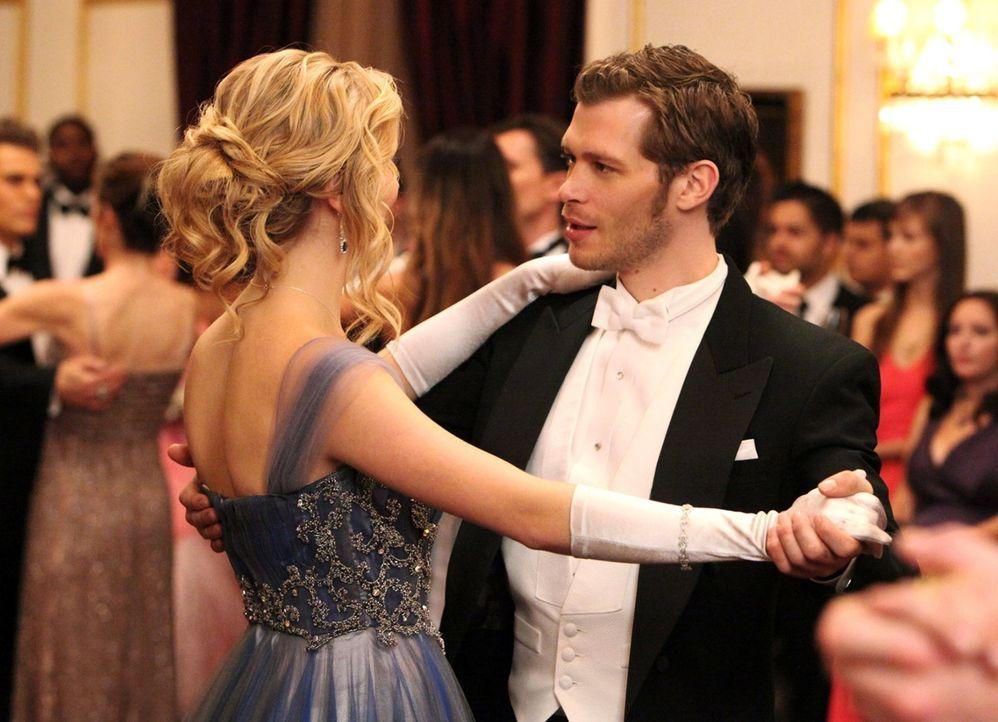 Klaus (Joseph Morgan, r.) nutzt die Chance und macht sich an Caroline (Candice Accola, r.) heran, die den Avancen nicht abgeneigt zu sein scheint ...