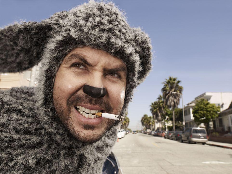 (1. Staffel)  - Wilfred (Jason Gann), der Hund, ist ein ungehobelter und mürrischer Zeitgenosse ... - Bildquelle: 2011 FX Networks, LLC. All rights reserved.