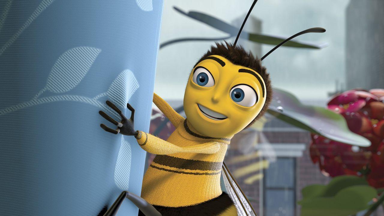 Denkt, dass er zu mehr bestimmt sein muss, als nur zum Honigproduzenten: Barry ... - Bildquelle: BEE MOVIE TM &   2007 DREAMWORKS ANIMATION LLC. All Rights Reserved.