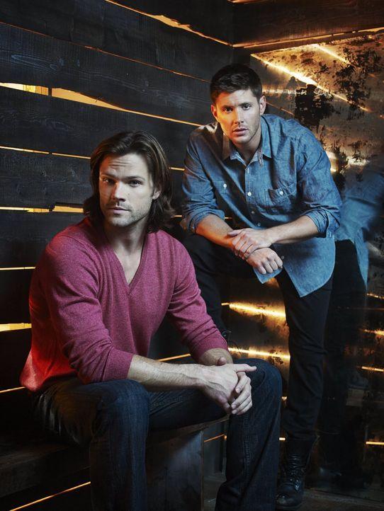 (11. Staffel) - Nachdem die Finsternis befreit wurde, setzen Sam (Jared Padalecki, l.) und Dean (Jensen Ackles, r.) alles daran, sie einzudämmen, do... - Bildquelle: 2013 Warner Brothers