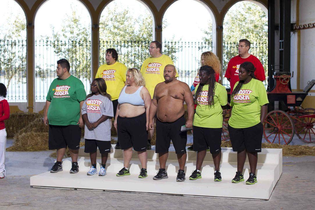 """Stolz präsentieren einige der Kandidaten auf der Waage ihr verlorenes Gewicht. Das harte Training und die radikale Umstellung der Ernährung bei """"T... - Bildquelle: Enrique Cano SAT.1"""