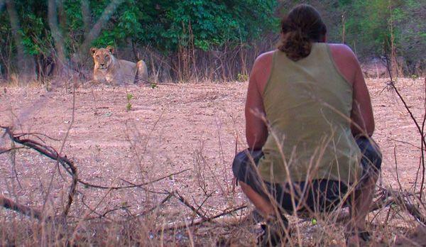 Löwin wird sauer - Bildquelle: Richard Gress