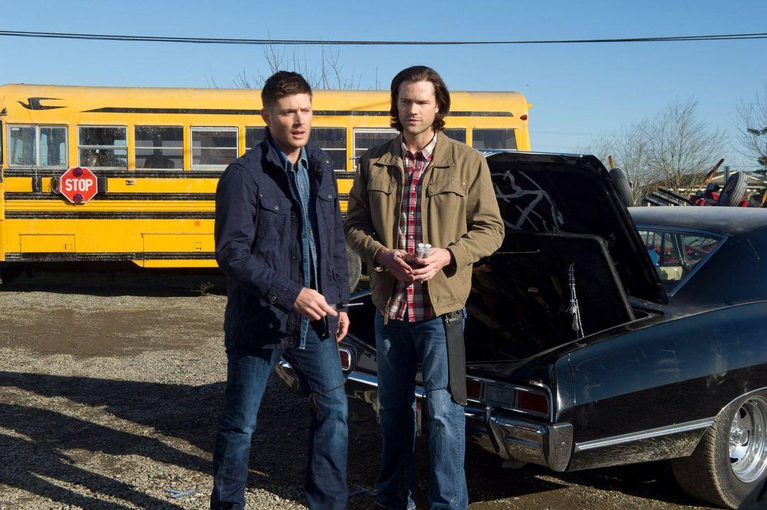 Während Sam (Jared Padalecki, r.) und Dean (Jensen Ackles, l.) sich auf ihre Kampfkunst verlassen, fasst Sheriff Mills einen anderen, gefährlichen P... - Bildquelle: 2013 Warner Brothers