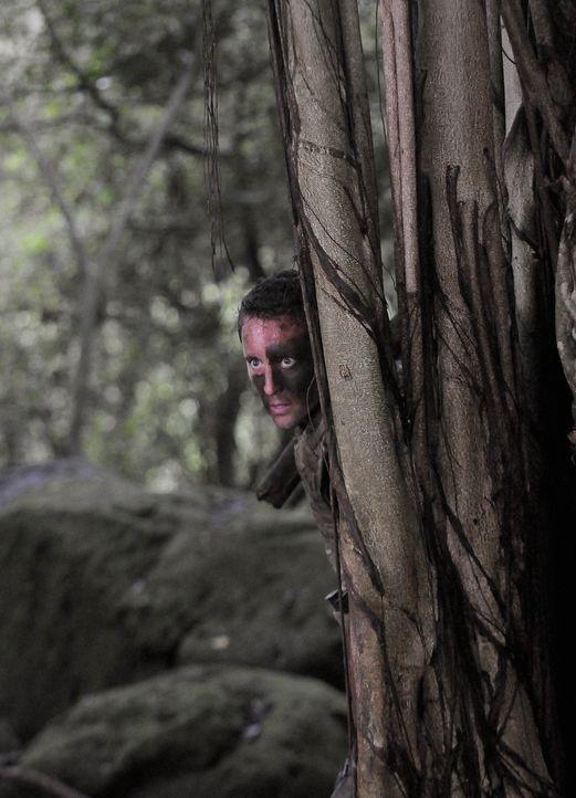 Steve (Alex O'Loughlin) und sein Team versuchen, die Kronzeugin Julie zu finden und zum Gericht zu eskortieren. Julie ist in den Dschungel geflücht... - Bildquelle: TM &   2010 CBS Studios Inc. All Rights Reserved.
