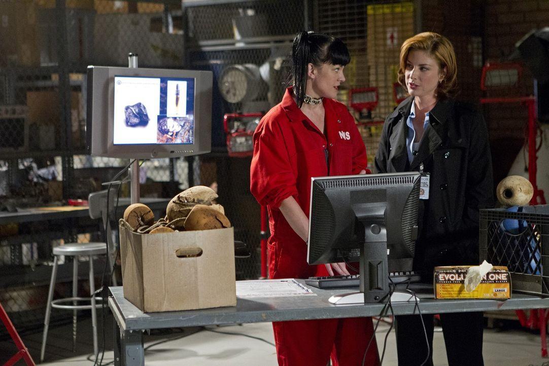 Versuchen, einen neuen Fall aufzudecken: Abby (Pauley Perrette, l.) und Agent Abigail Borin (Diane Neal, r.) ... - Bildquelle: CBS Television