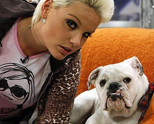 fruehstuecksfernsehen-studiohund-lotte-in-action-im-studio-046