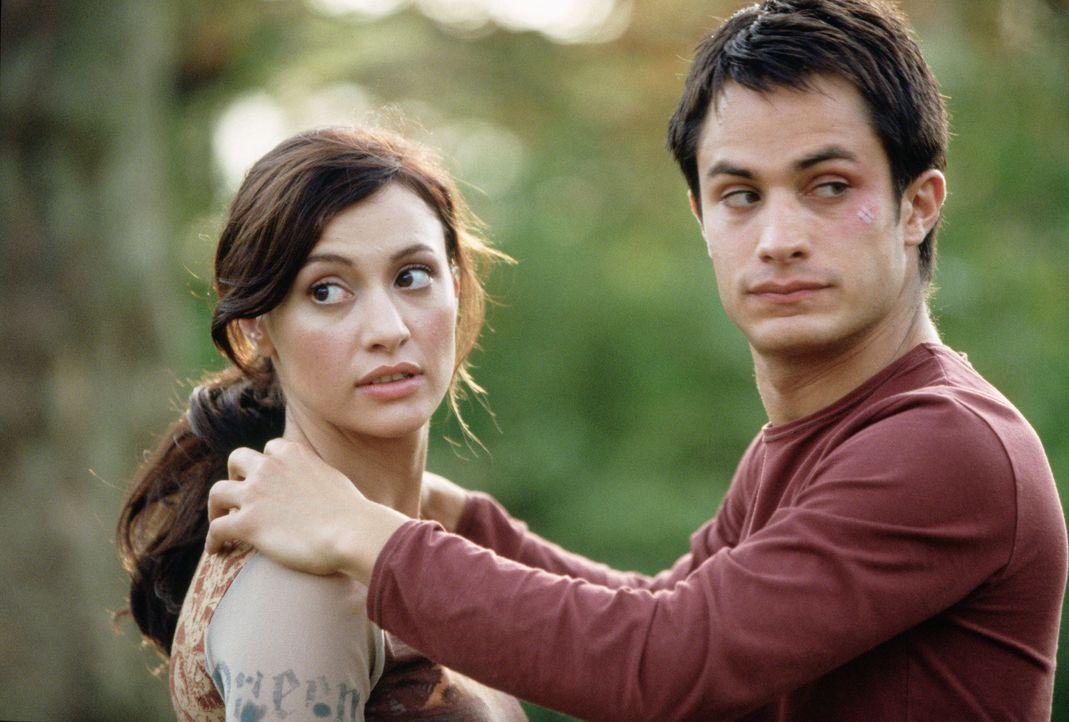 Am Vorabend ihrer Hochzeit küsst Carmen (Natalia Verbeke, l.) unbekümmert einen attraktiven Fremden - Kit (Gael García Bernal, r.) - mit fatalen...